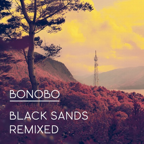 Black Sands Remixed - Bonobo