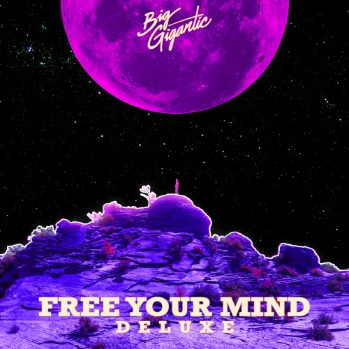 Free Your Mind (Deluxe Version) - Big Gigantic