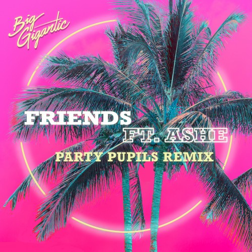 Friends (Party Pupils Remix) - Big Gigantic featuring Ashe