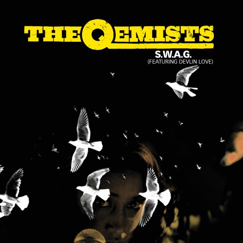 S.W.A.G. - The Qemists feat. Devlin Love