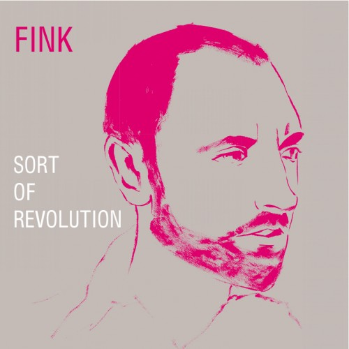 Sort of Revolution - Fink