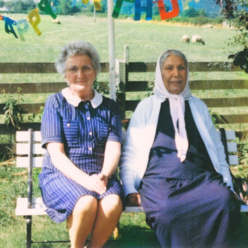Theory of Colours - Dauwd